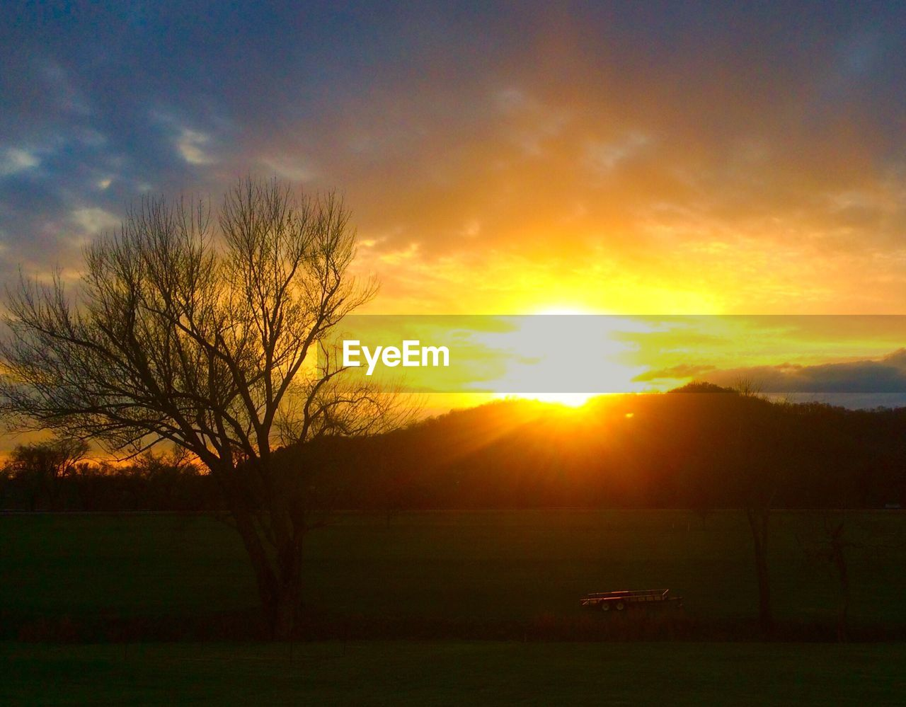 sunset, tranquility, tranquil scene, beauty in nature, scenics, nature, sun, sky, tree, landscape, silhouette, no people, idyllic, sunlight, cloud - sky, bare tree, outdoors, grass, day