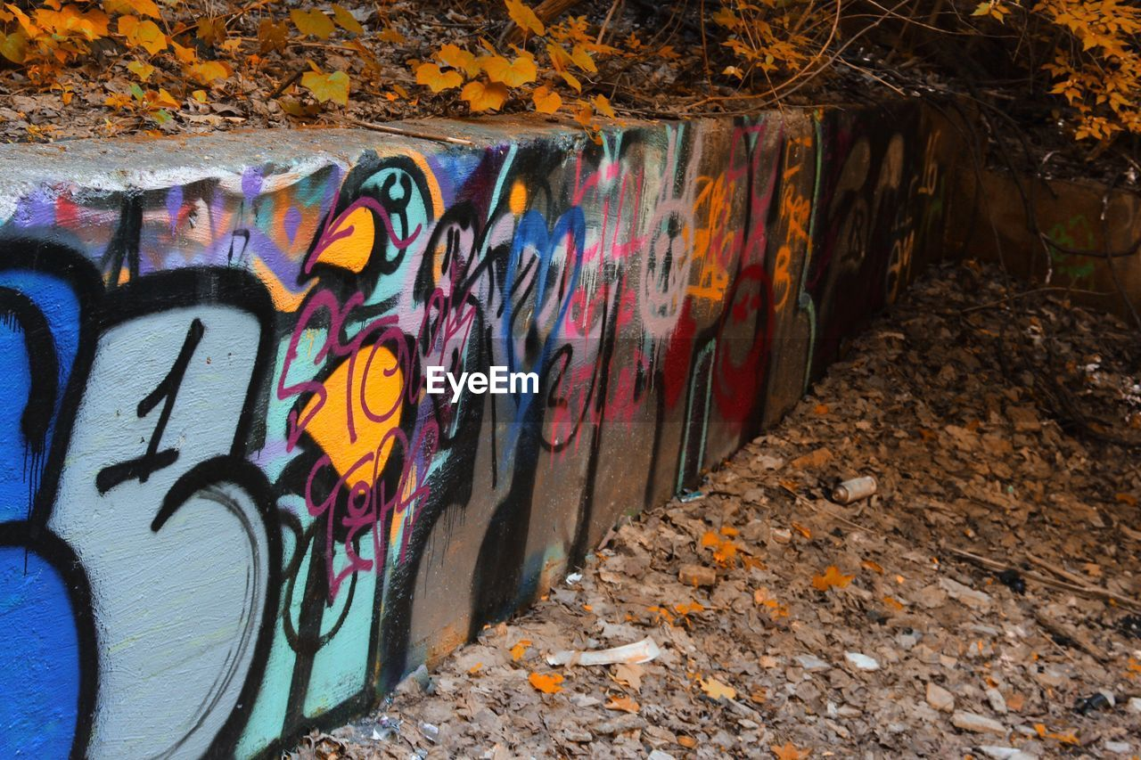 graffiti, art and craft, creativity, multi colored, wall - building feature, wall, architecture, no people, street art, paint, outdoors, day, built structure, spray paint, text, pattern, city, nature, craft, mural, concrete