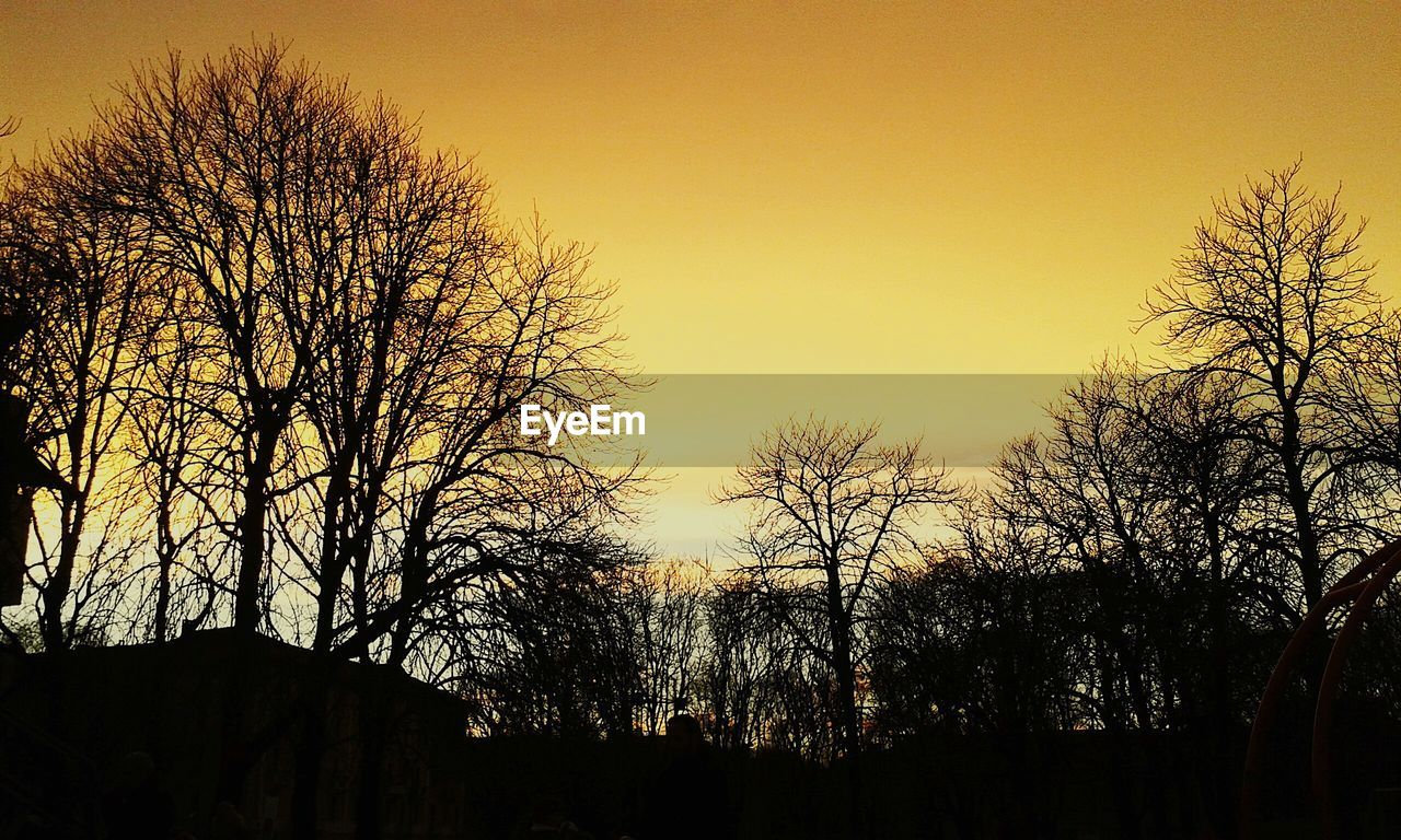 Silhouette bare trees against clear sky during sunset
