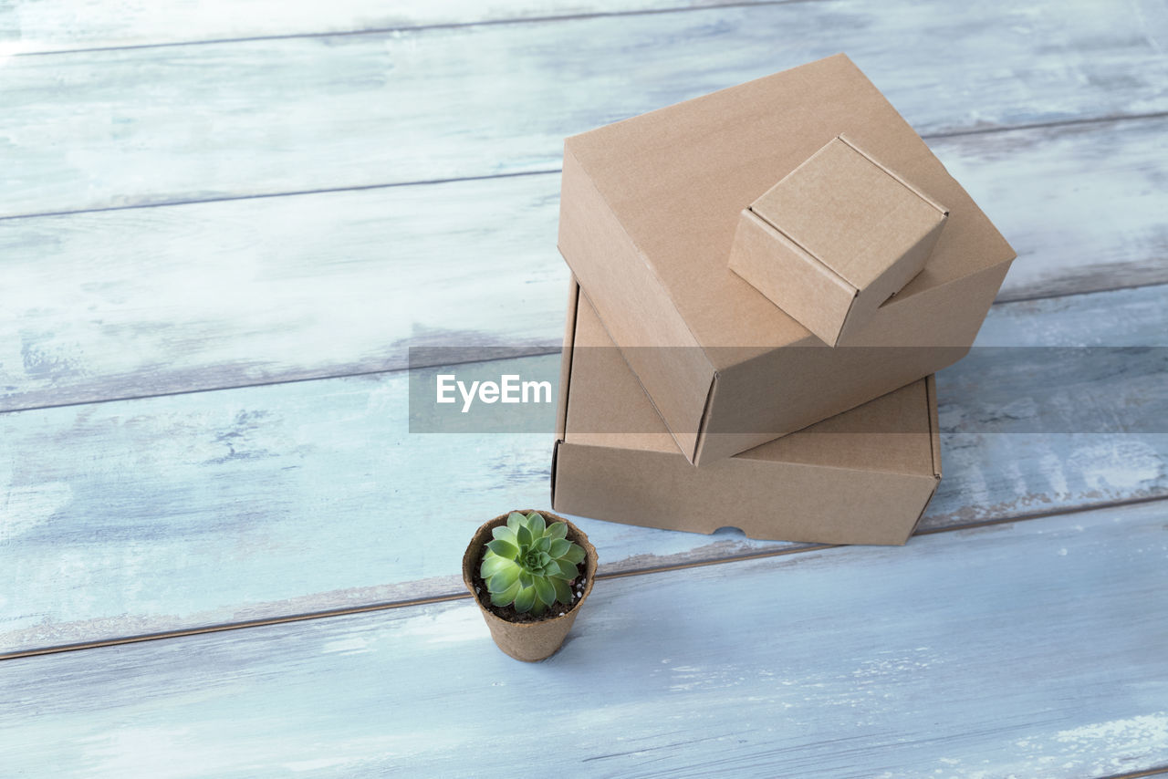still life, wood - material, no people, healthy eating, food, food and drink, close-up, wellbeing, table, indoors, green color, fruit, day, high angle view, freshness, focus on foreground, single object, nature, container