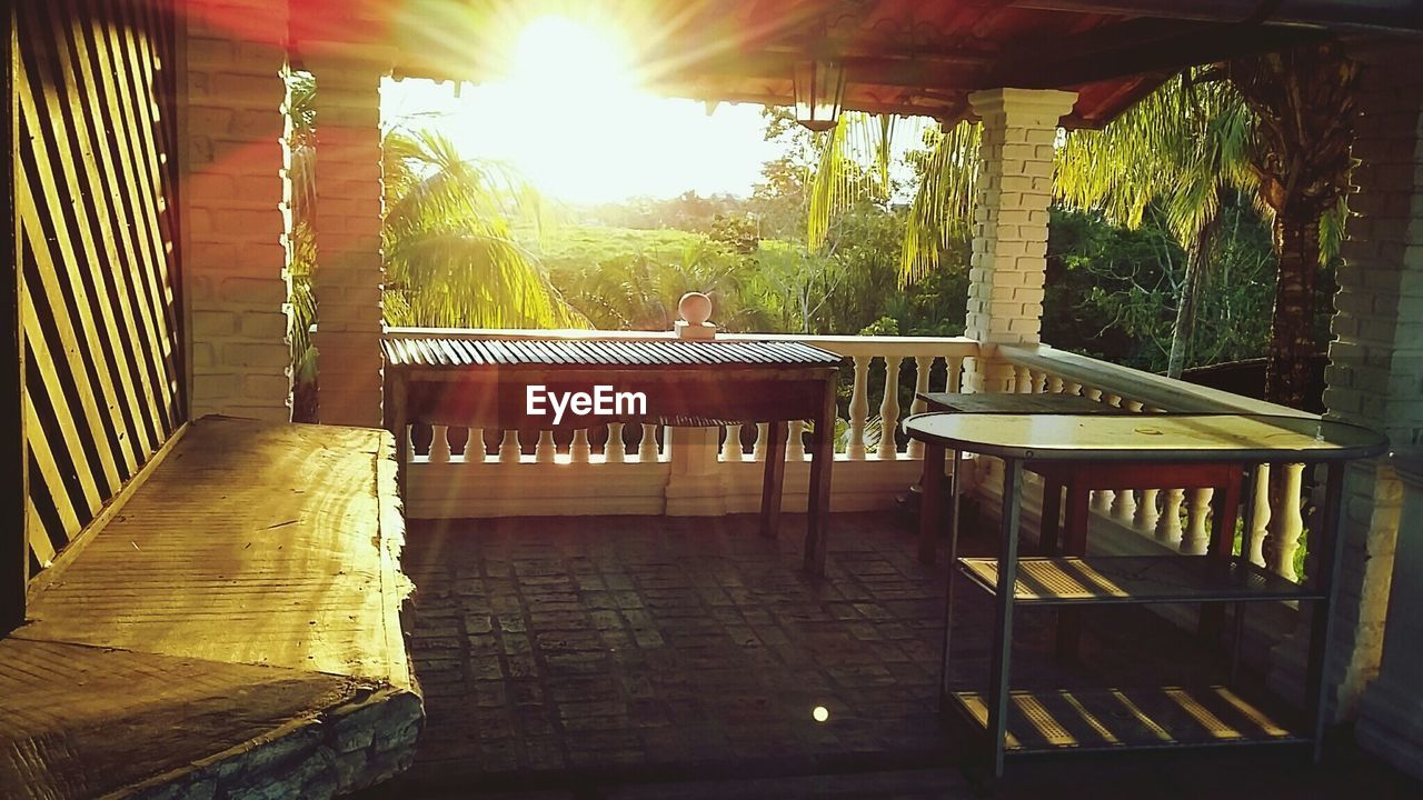 table, day, sunlight, balcony, indoors, tree, nature, no people