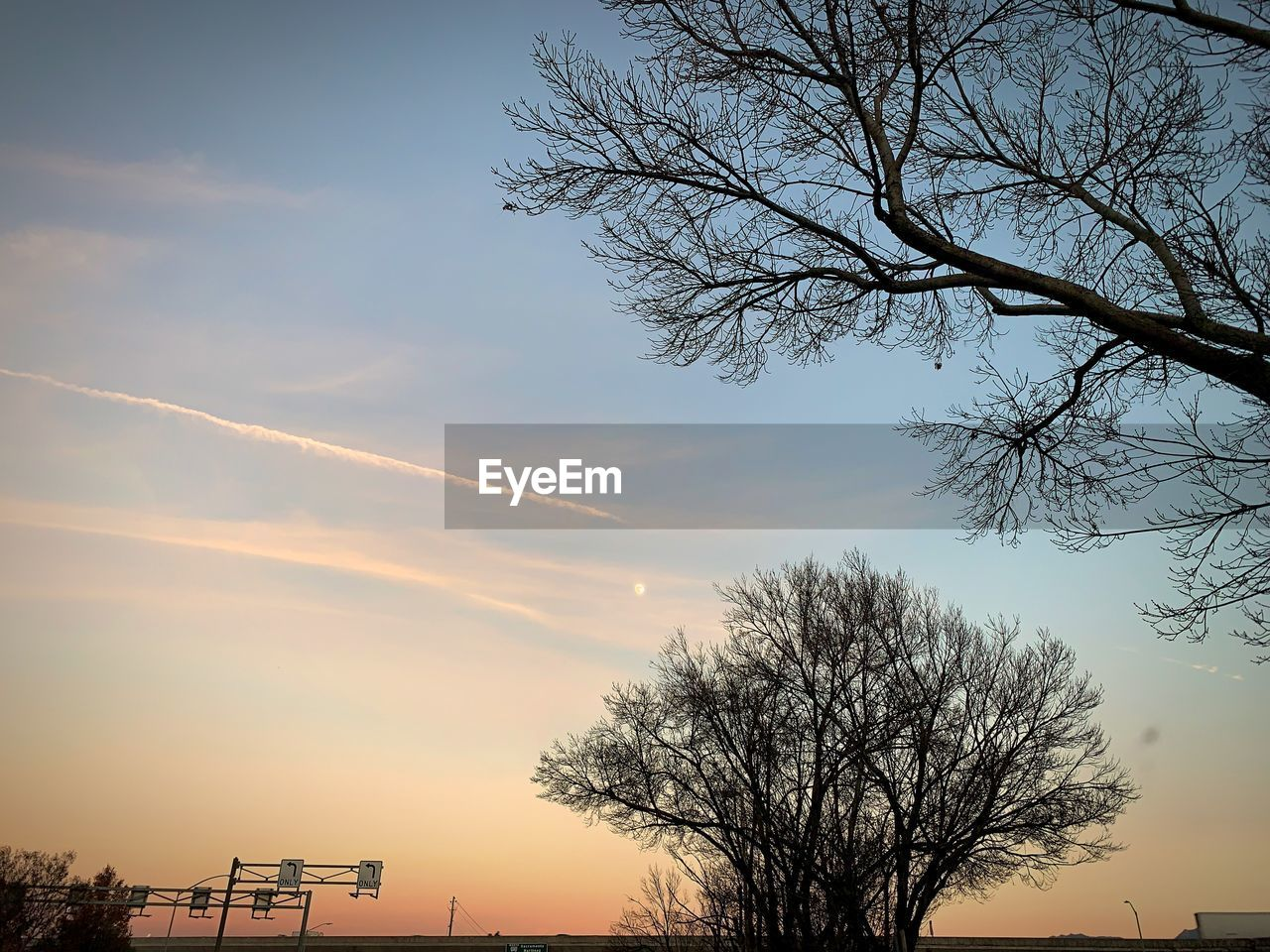 sky, tree, plant, sunset, bare tree, silhouette, branch, cloud - sky, nature, beauty in nature, scenics - nature, no people, tranquility, low angle view, outdoors, tranquil scene, architecture, orange color, built structure, non-urban scene