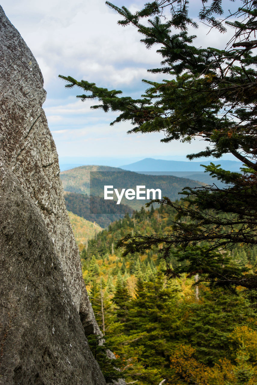 mountain, nature, tree, adventure, vegetation, mountain range, landscape, sky, challenge, day, beauty in nature, outdoors, no people, freshness