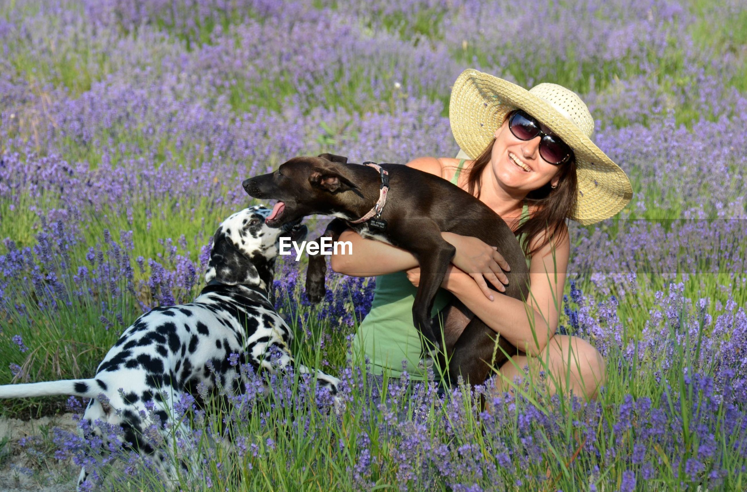 Happy woman with dogs at lavender field