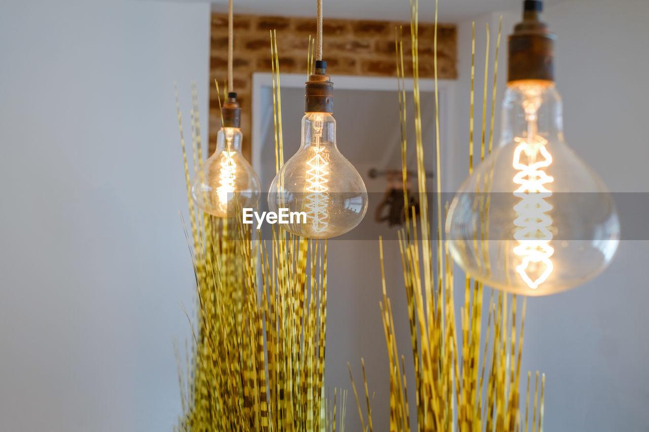 Illuminated light bulbs hanging at home