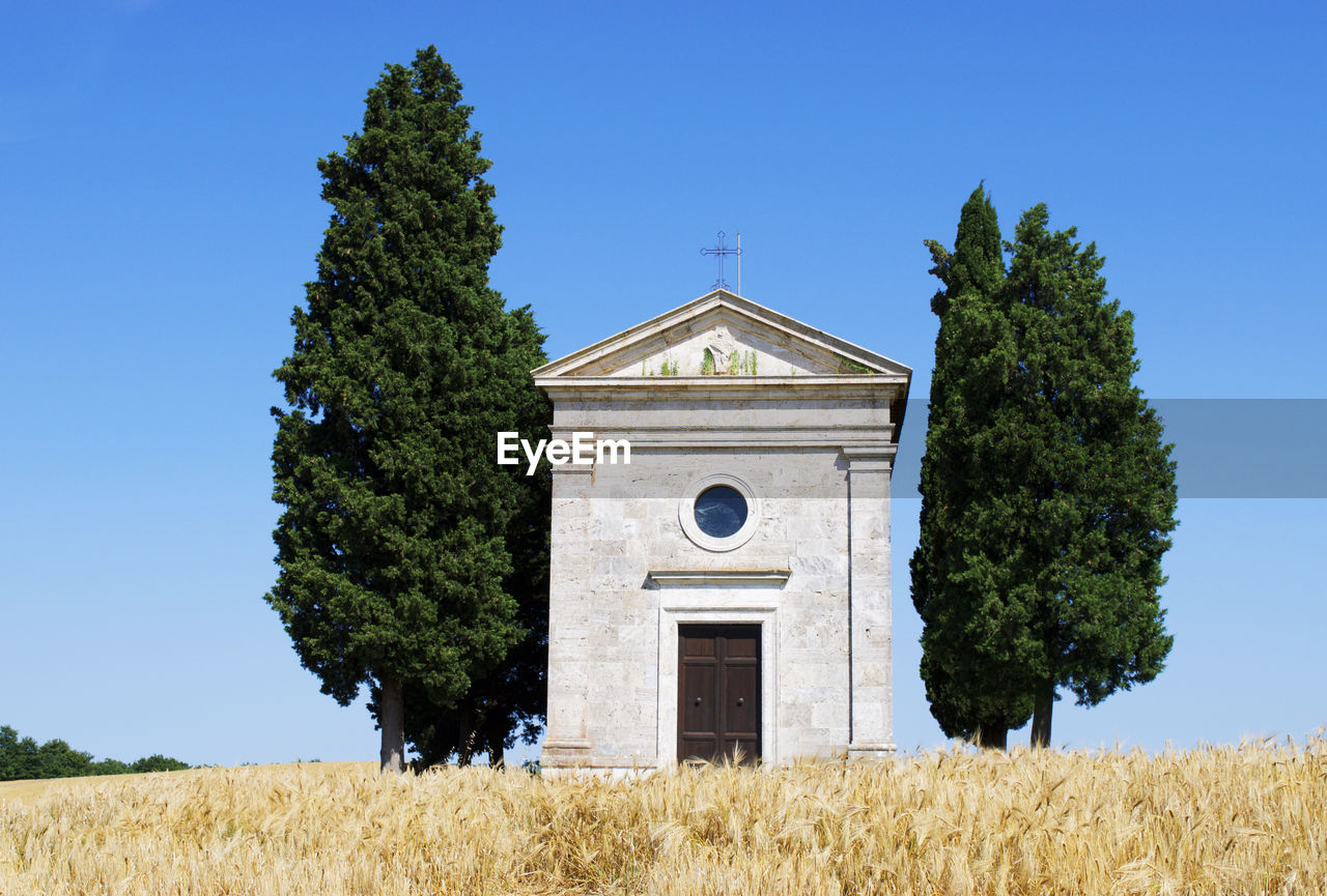 tree, architecture, built structure, growth, building exterior, day, clear sky, grass, field, place of worship, religion, no people, blue, outdoors, nature, sky, low angle view, green color, spirituality, plant, bell tower, beauty in nature