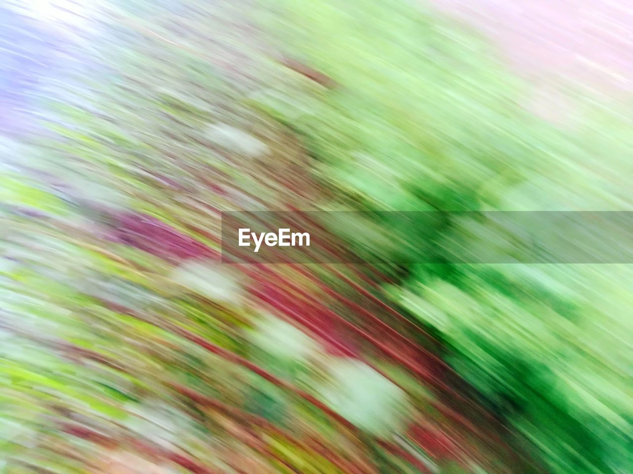 backgrounds, full frame, blurred motion, green color, no people, day, nature, close-up, pattern, growth, plant, beauty in nature, abstract, motion, selective focus, outdoors, defocused, sunlight, long exposure, tranquility