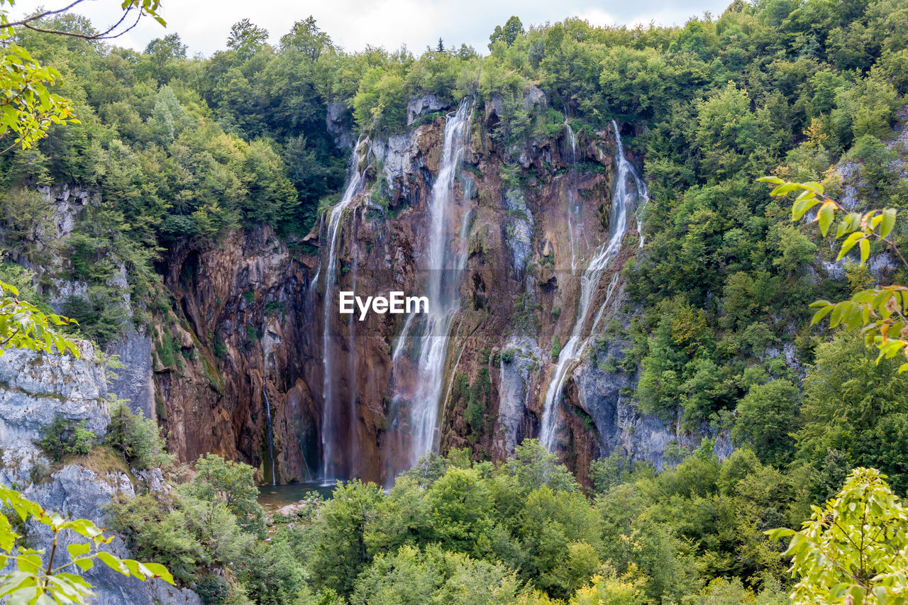 plant, tree, beauty in nature, nature, scenics - nature, rock, land, solid, growth, tranquility, non-urban scene, forest, rock - object, day, green color, no people, waterfall, tranquil scene, rock formation, outdoors, flowing water