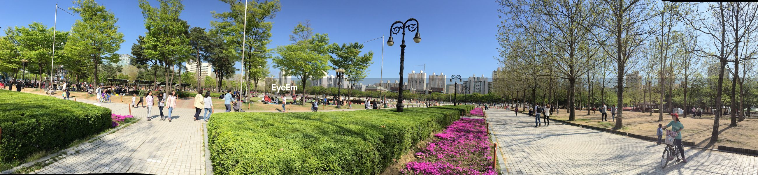 Panoramic view of pyeongchon central park