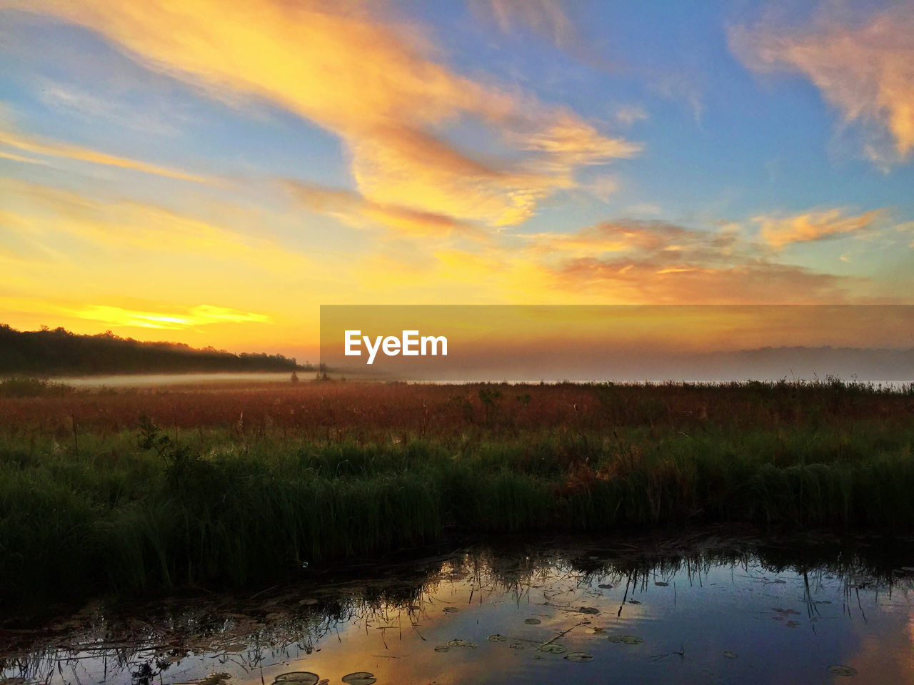 sunset, tranquil scene, nature, scenics, tranquility, beauty in nature, sky, landscape, reflection, lake, grass, water, idyllic, outdoors, no people, field, silhouette, cloud - sky, growth, tree, day