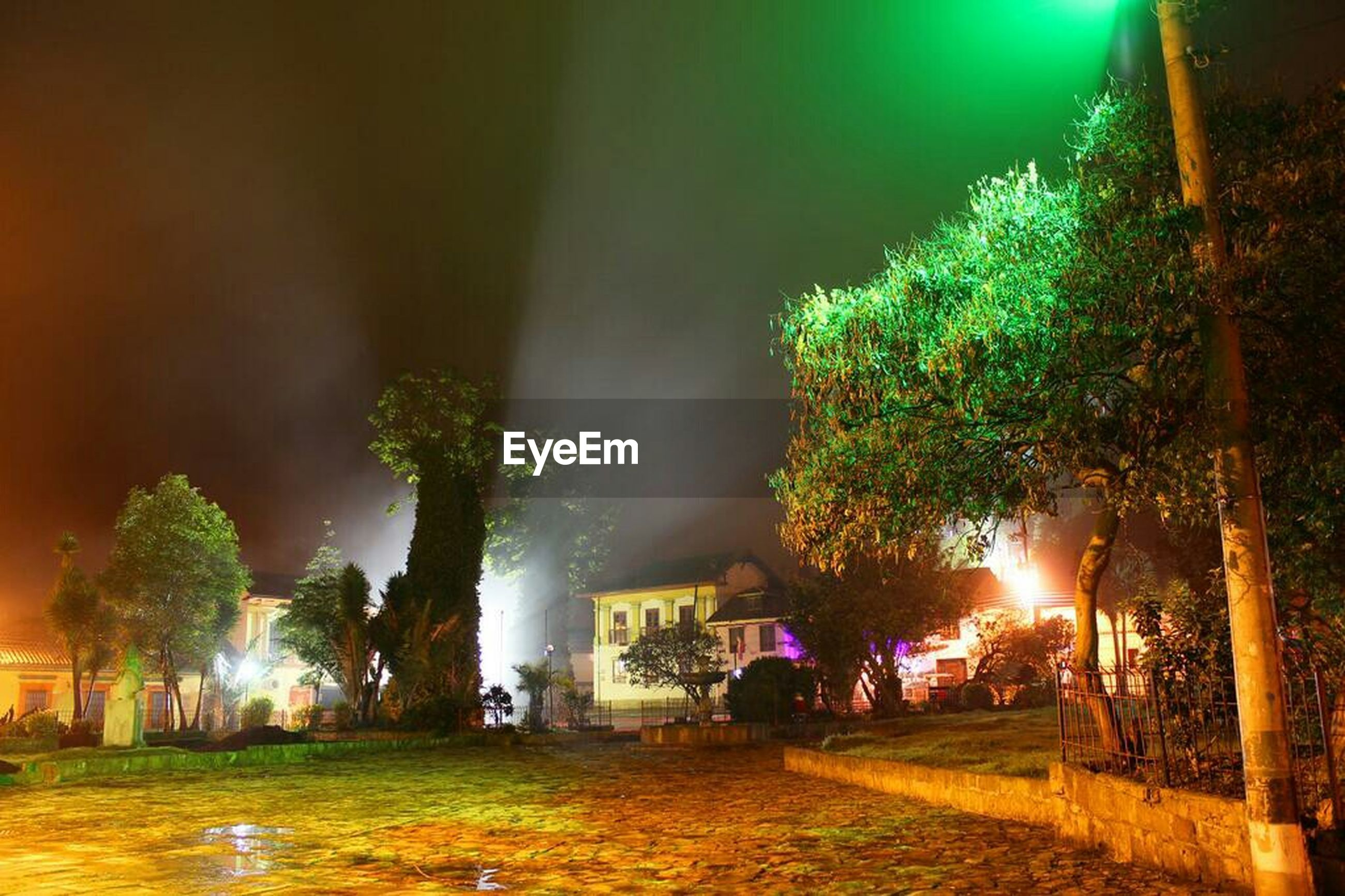 illuminated, night, building exterior, built structure, tree, architecture, grass, street light, lens flare, lighting equipment, outdoors, house, glowing, light - natural phenomenon, growth, park - man made space, incidental people, street, lawn, green color