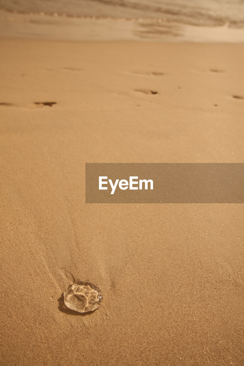 sand, land, beach, nature, no people, water, high angle view, brown, tranquility, day, arid climate, sea, footprint, desert, outdoors, love, scenics - nature, climate, close-up, buried