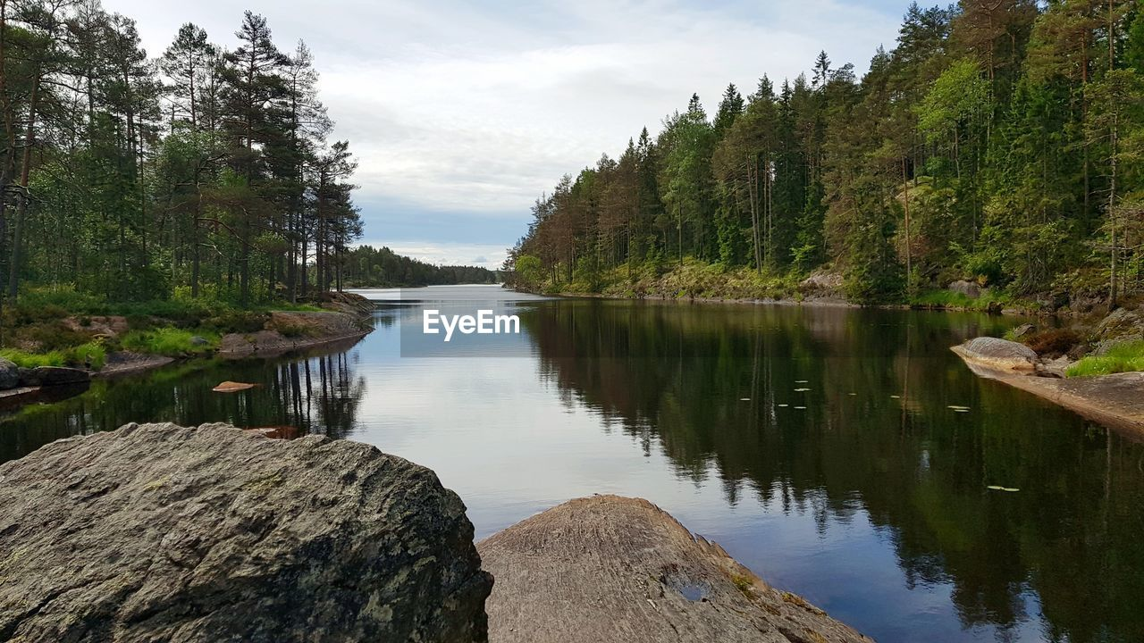 water, tree, reflection, tranquility, tranquil scene, lake, plant, scenics - nature, beauty in nature, sky, nature, day, no people, non-urban scene, rock, idyllic, solid, rock - object, outdoors