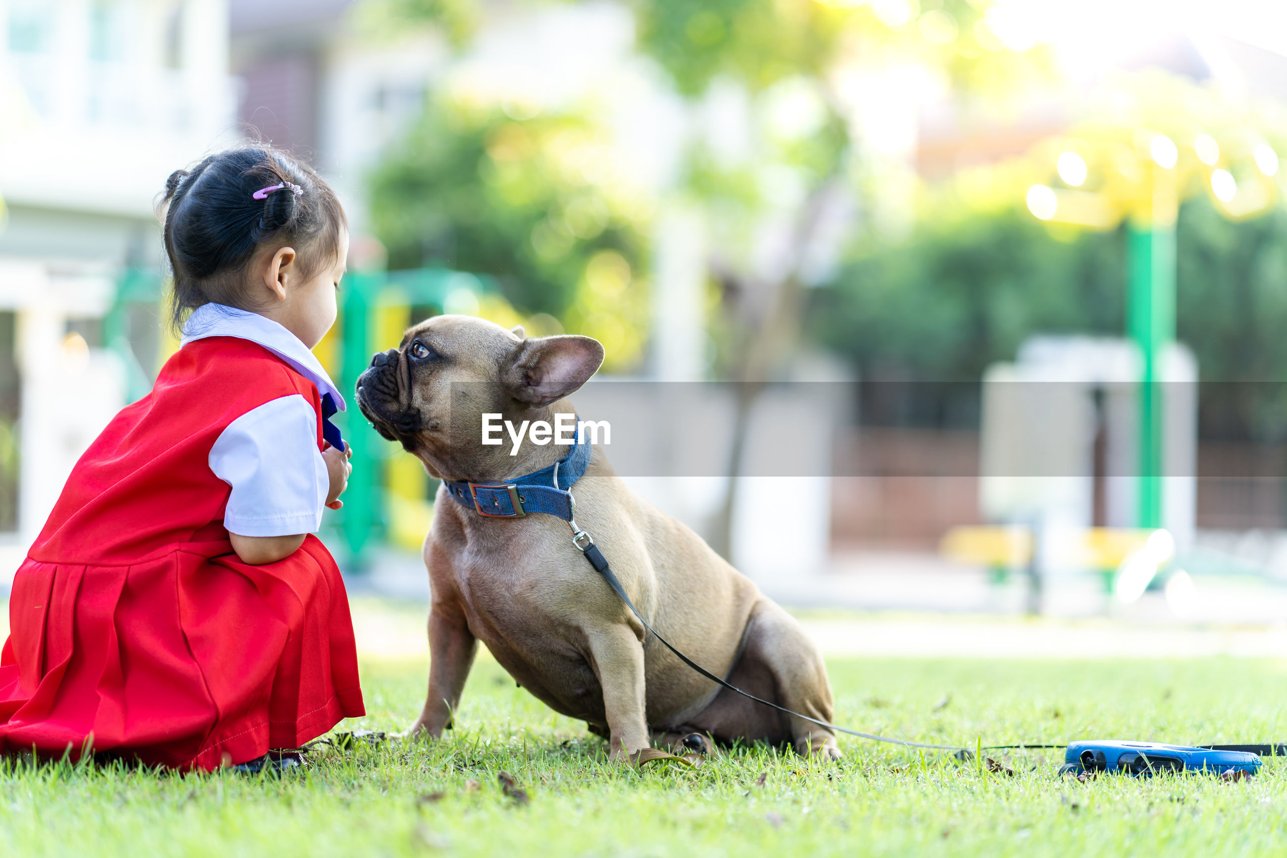 Girl crouching by dog on land
