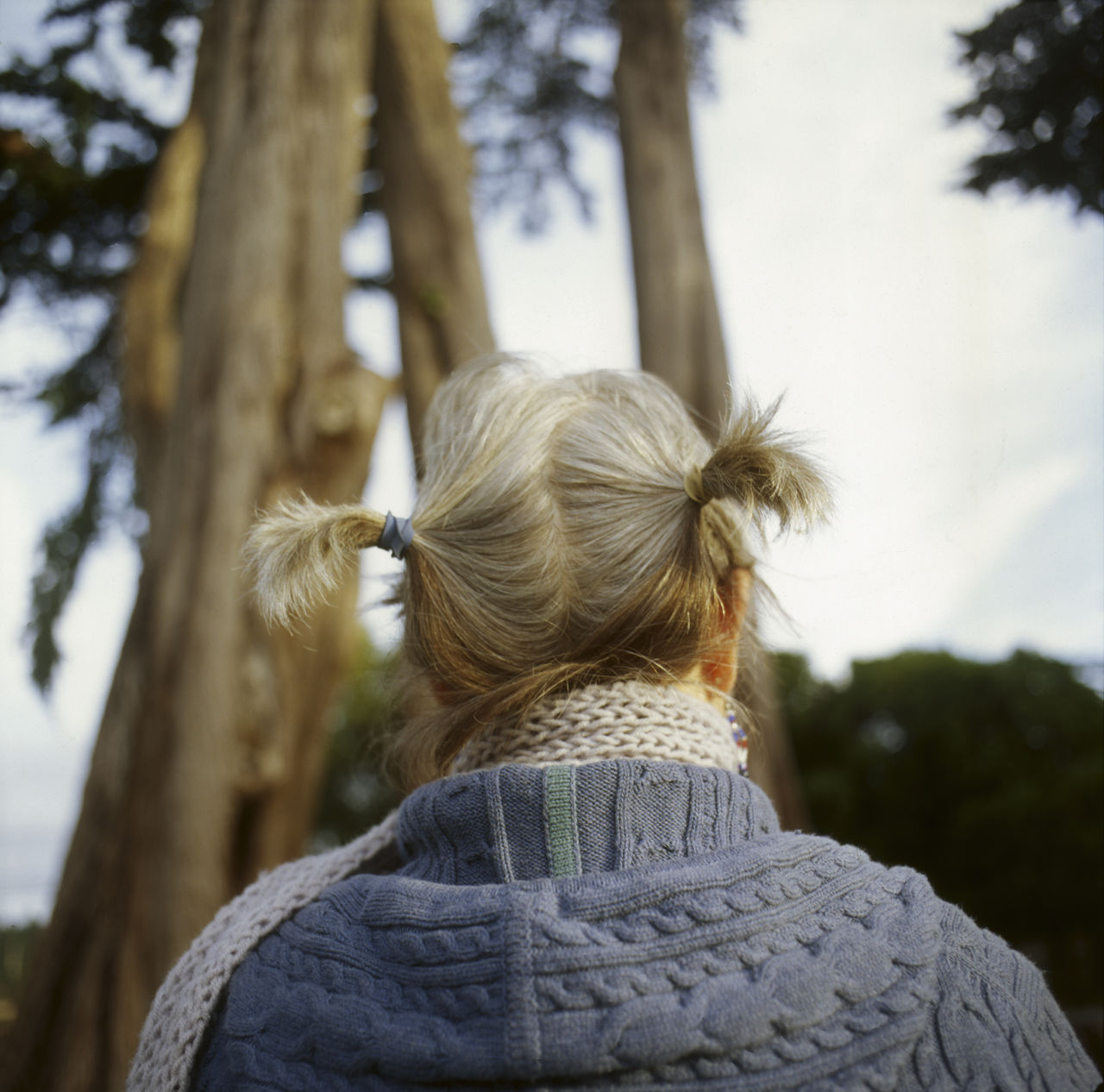 rear view, one person, real people, leisure activity, women, lifestyles, hairstyle, tree, headshot, hair, focus on foreground, adult, day, nature, portrait, winter, plant, warm clothing, clothing, outdoors, human hair, looking at view, scarf
