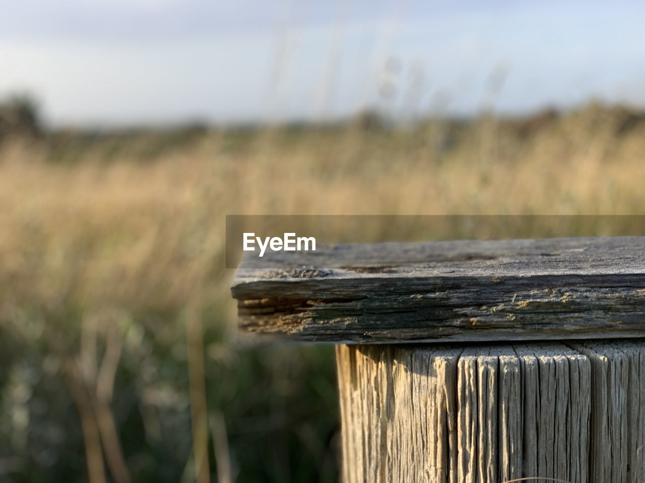 wood - material, focus on foreground, land, field, nature, close-up, day, barrier, fence, boundary, landscape, no people, sky, grass, outdoors, plant, tranquility, rural scene, agriculture, security, wooden post
