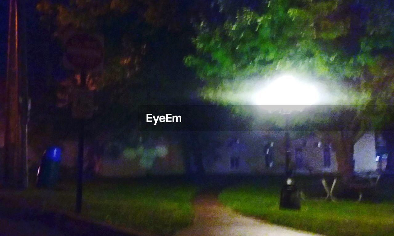 lens flare, illuminated, night, grass, outdoors, no people, nature, tree, sky