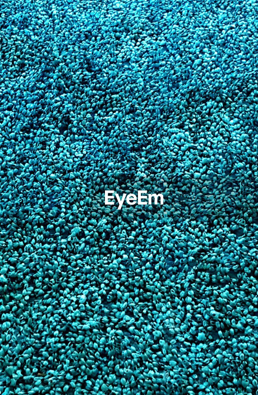 full frame, backgrounds, blue, textured, textile, pattern, no people, indoors, abundance, close-up, large group of objects, still life, food and drink, carpet - decor, rug, industry, softness, food, high angle view, clothing, swimming pool, luxury, garment, turquoise colored