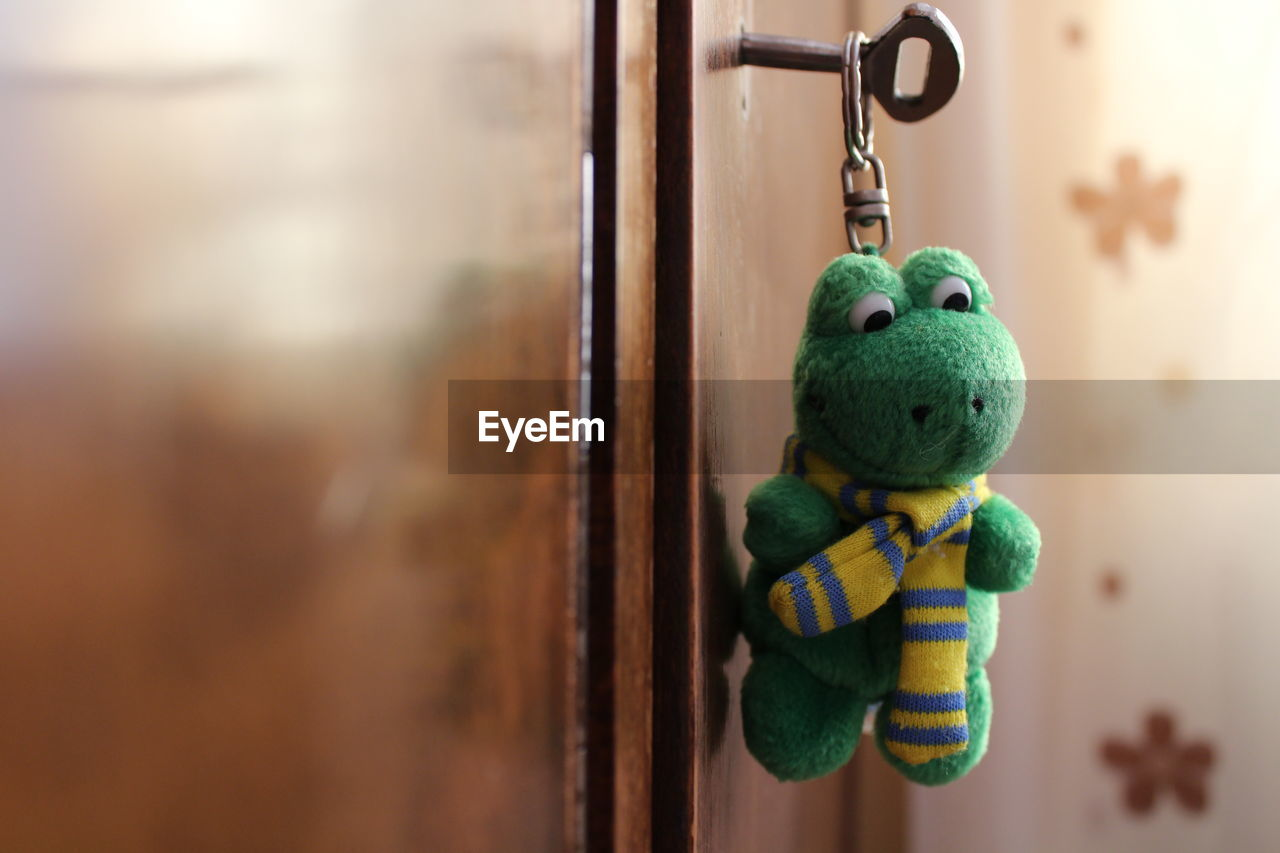 Close-Up Of Frog Shape Key Ring In Cabinet