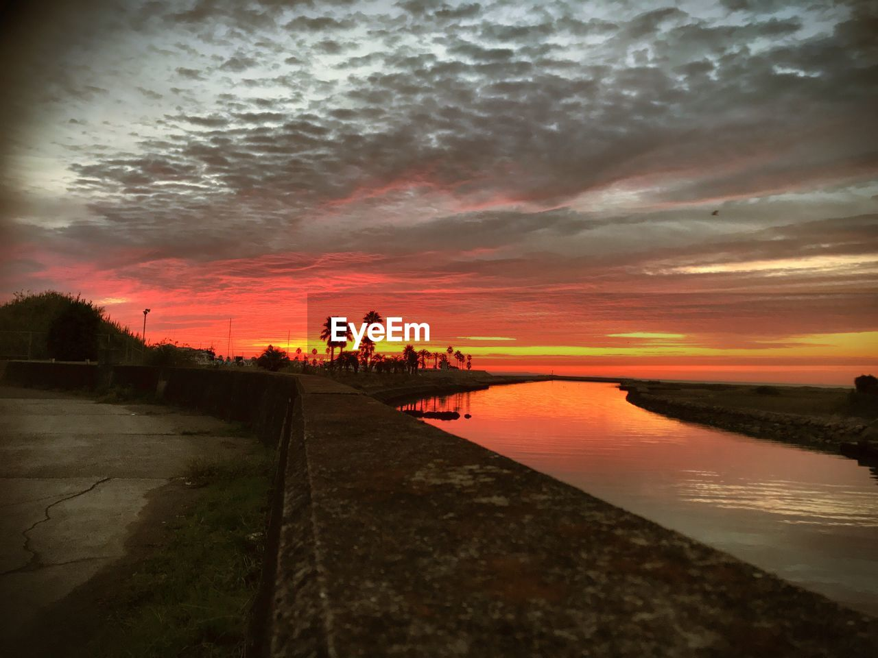 sunset, cloud - sky, water, sky, orange color, nature, scenics, beauty in nature, outdoors, tranquil scene, silhouette, sea, tree, no people