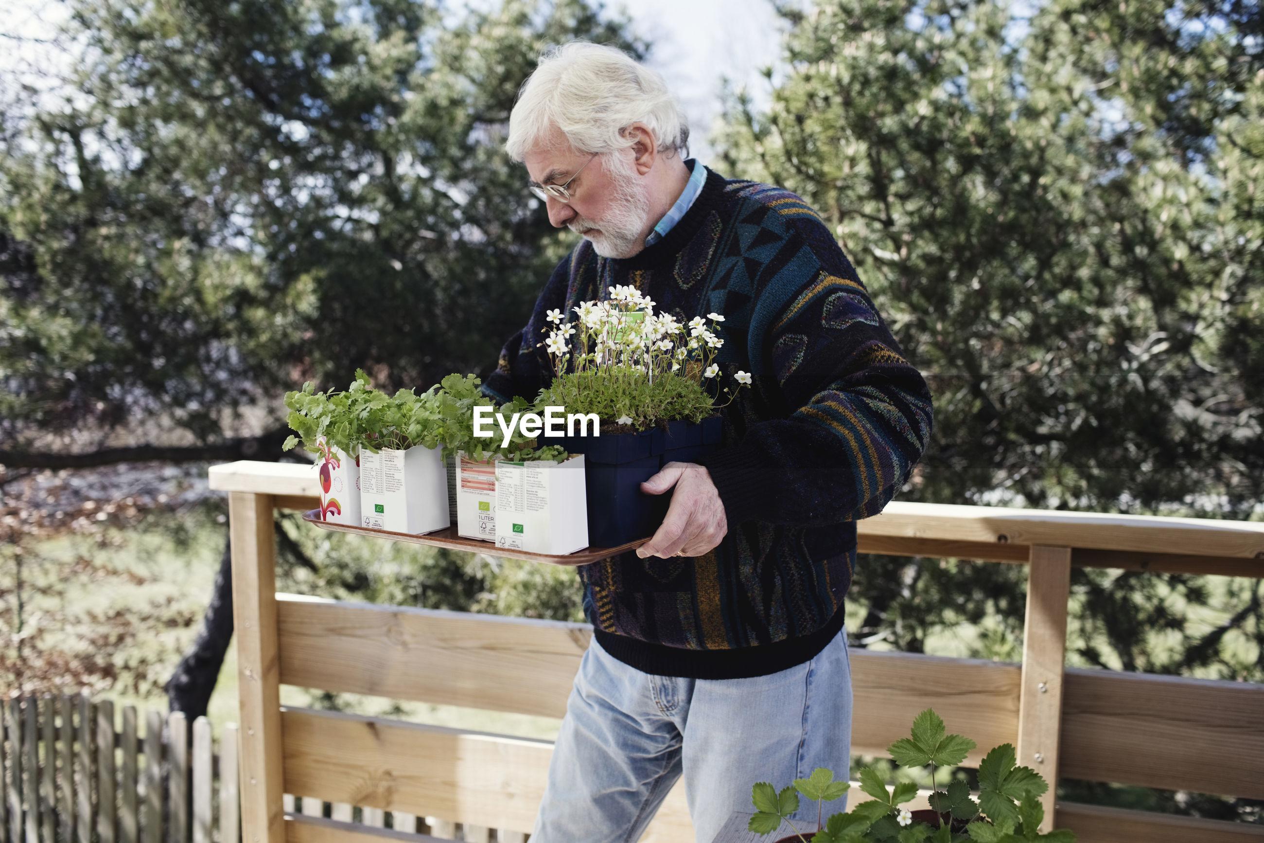 FULL LENGTH OF MAN HOLDING PLANT