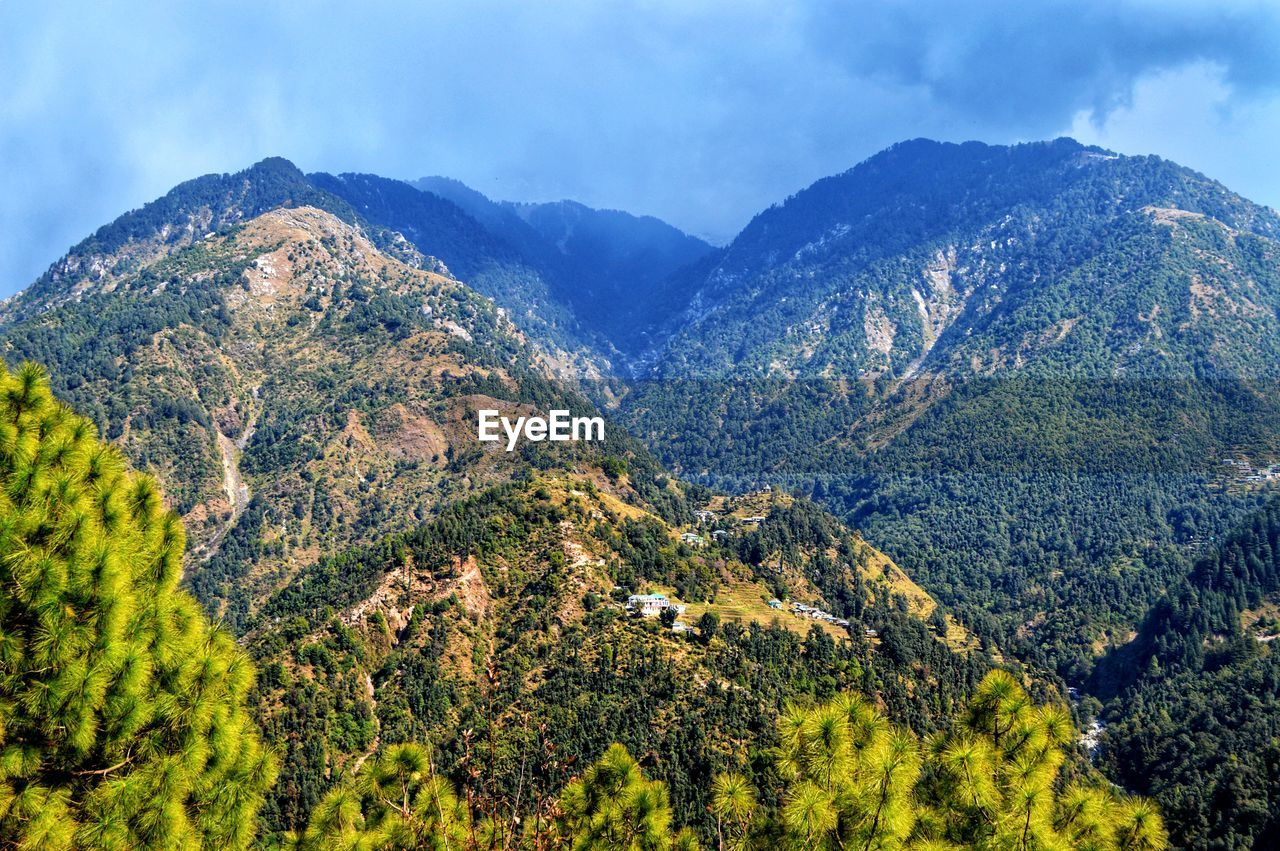 mountain, scenics - nature, beauty in nature, tranquil scene, tranquility, sky, plant, mountain range, non-urban scene, nature, tree, environment, no people, green color, day, idyllic, landscape, cloud - sky, outdoors, growth, mountain peak