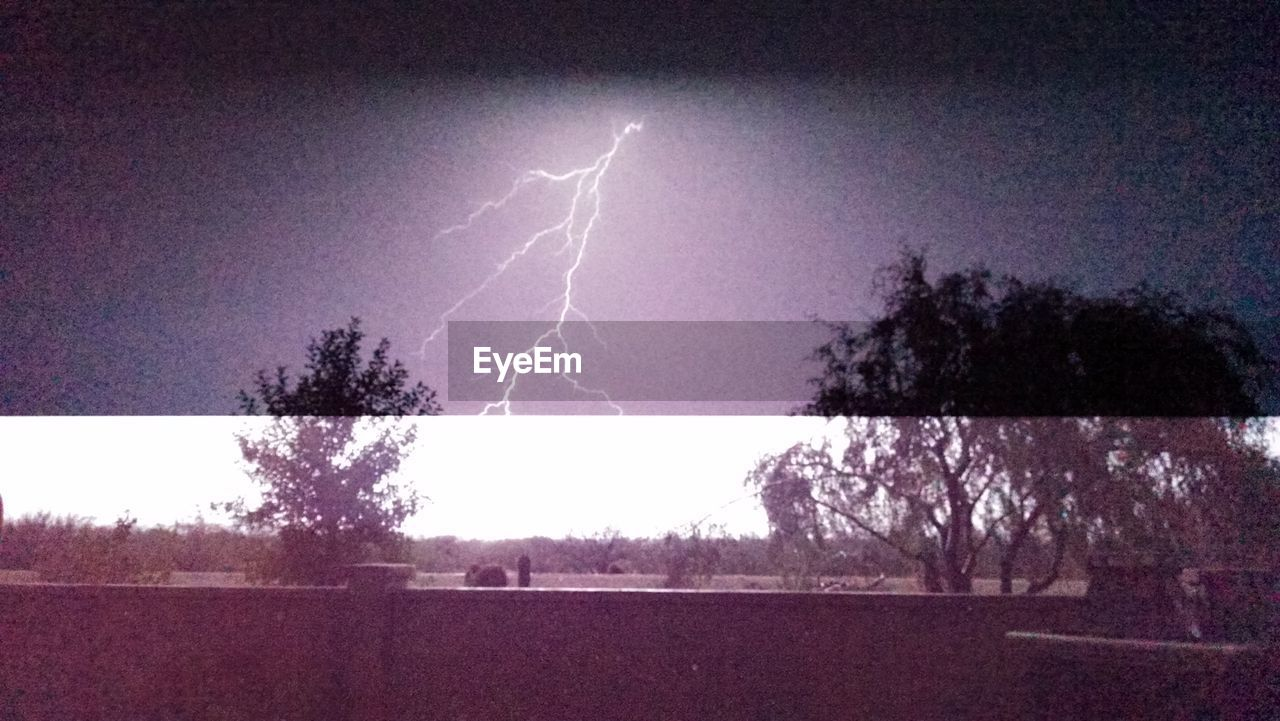 lightning, tree, power in nature, forked lightning, thunderstorm, storm, weather, silhouette, dramatic sky, danger, beauty in nature, nature, scenics, storm cloud, landscape, night, illuminated, no people, outdoors, sky, bare tree
