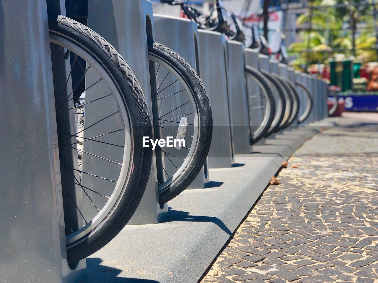 transportation, in a row, bicycle, day, wheel, focus on foreground, sunlight, bicycle rack, no people, mode of transportation, tire, land vehicle, outdoors, metal, stationary, city, street, paving stone, footpath, nature
