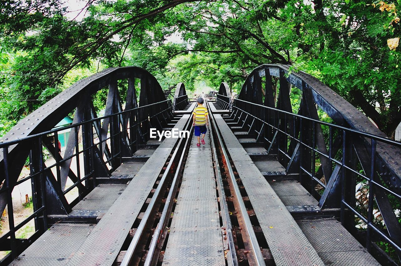 connection, the way forward, tree, direction, bridge, plant, transportation, architecture, railing, diminishing perspective, bridge - man made structure, built structure, day, nature, no people, metal, footbridge, vanishing point, outdoors, forest, track, long