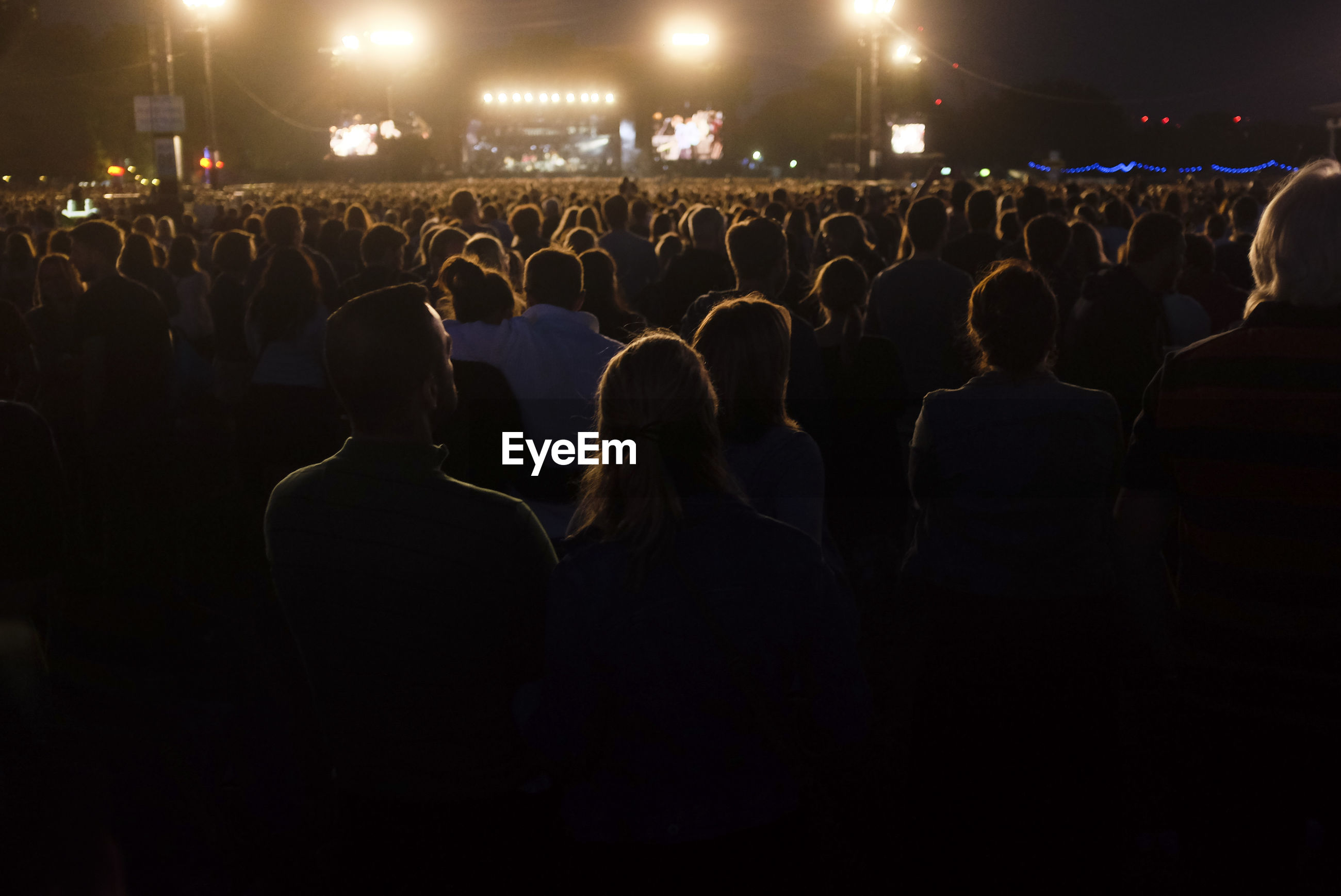 Rear view of people at music concert