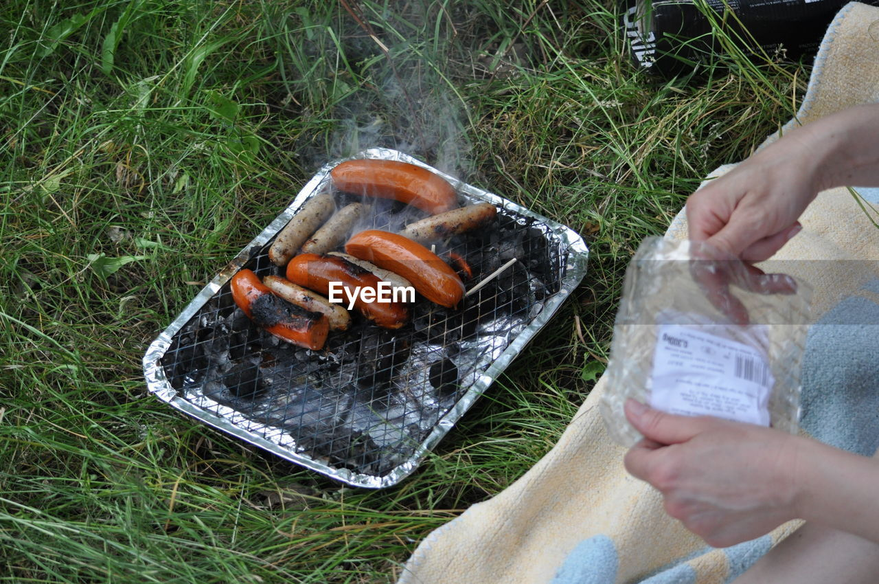grass, human hand, food and drink, human body part, barbecue, high angle view, food, outdoors, heat - temperature, day, one person, holding, healthy eating, freshness, people, close-up, animal themes, adult, adults only