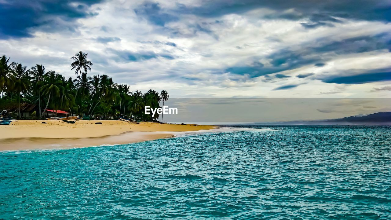 cloud - sky, sky, water, beauty in nature, sea, scenics - nature, tree, tranquil scene, tranquility, tropical climate, palm tree, beach, waterfront, plant, nature, land, idyllic, non-urban scene, no people, outdoors, coconut palm tree, turquoise colored