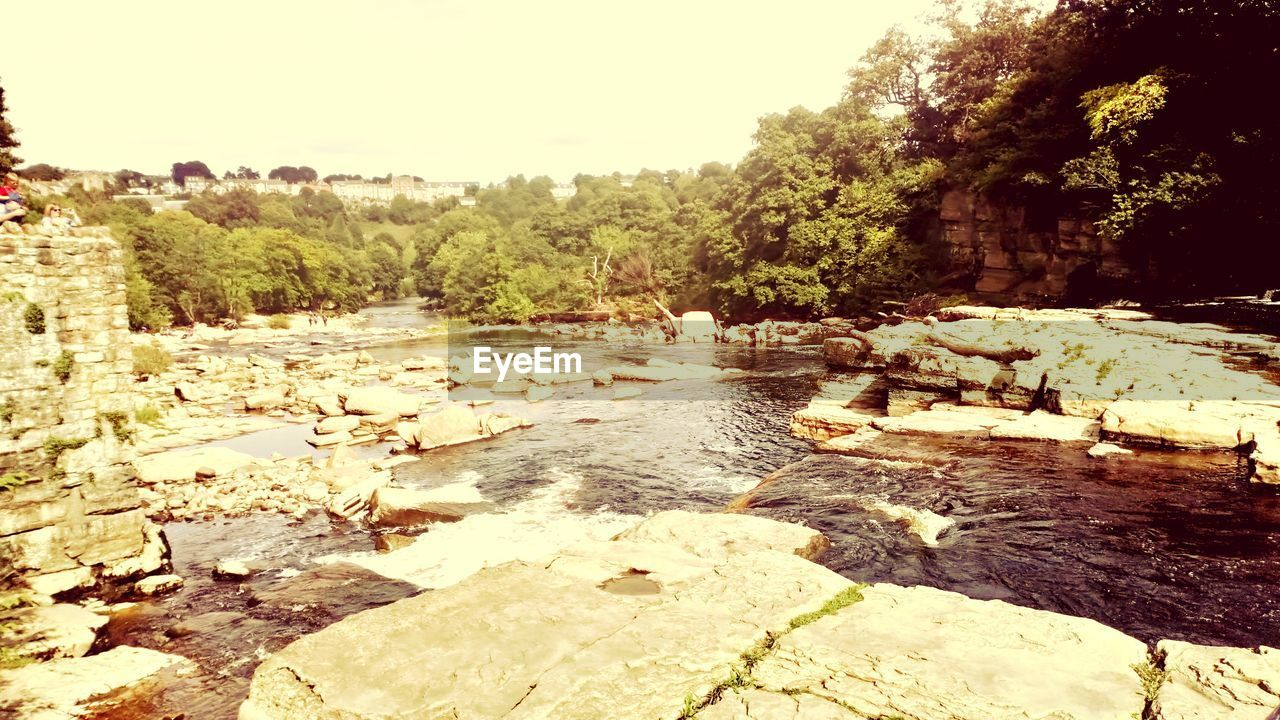 tree, water, nature, sky, day, plant, no people, tranquility, rock, scenics - nature, river, tranquil scene, solid, clear sky, outdoors, beauty in nature, rock - object, land, forest, flowing water, flowing