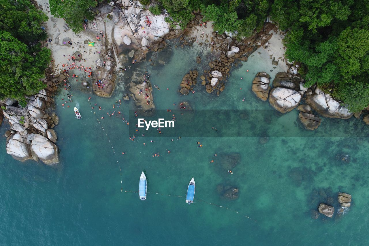 Directly above view of people swimming in sea