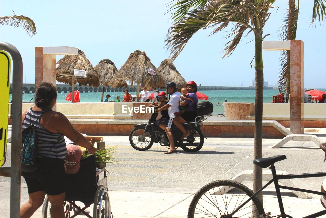 real people, bicycle, mode of transport, lifestyles, transportation, land vehicle, leisure activity, day, palm tree, tree, outdoors, riding, built structure, sitting, water, architecture, men, full length, building exterior, clear sky, nature, sky, one person, young adult