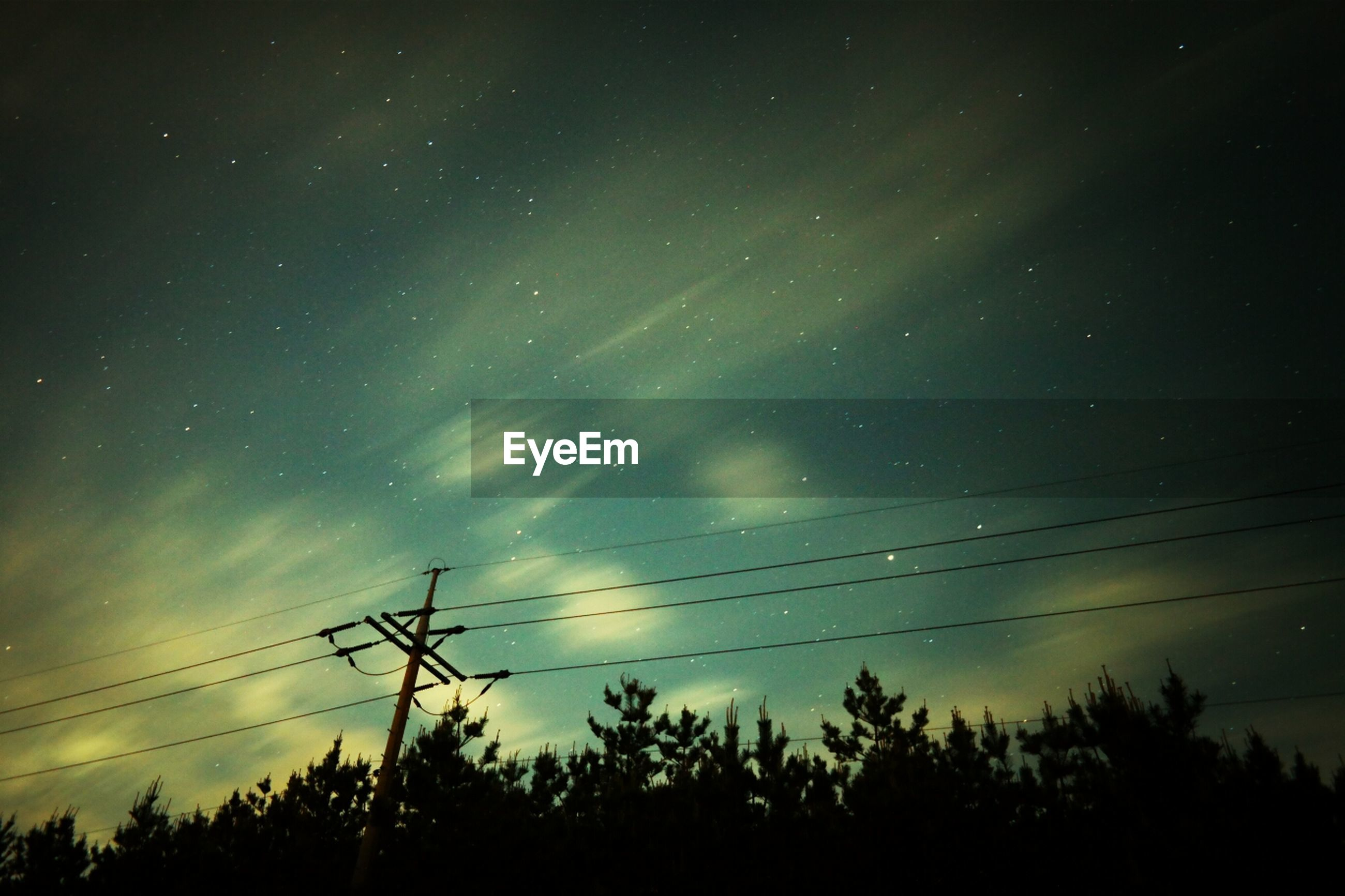 silhouette, low angle view, sky, scenics, power line, tranquility, tree, tranquil scene, beauty in nature, night, astronomy, nature, electricity, star - space, power supply, electricity pylon, cable, idyllic, connection, star field