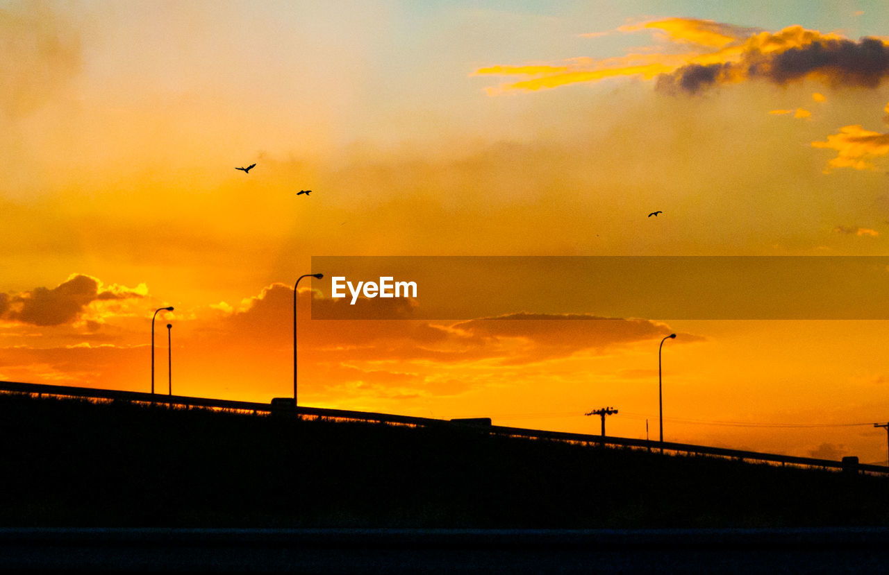 sunset, sky, orange color, cloud - sky, silhouette, beauty in nature, bird, vertebrate, animal themes, scenics - nature, animal, flying, nature, animals in the wild, no people, animal wildlife, tranquil scene, tranquility, transportation, street, outdoors