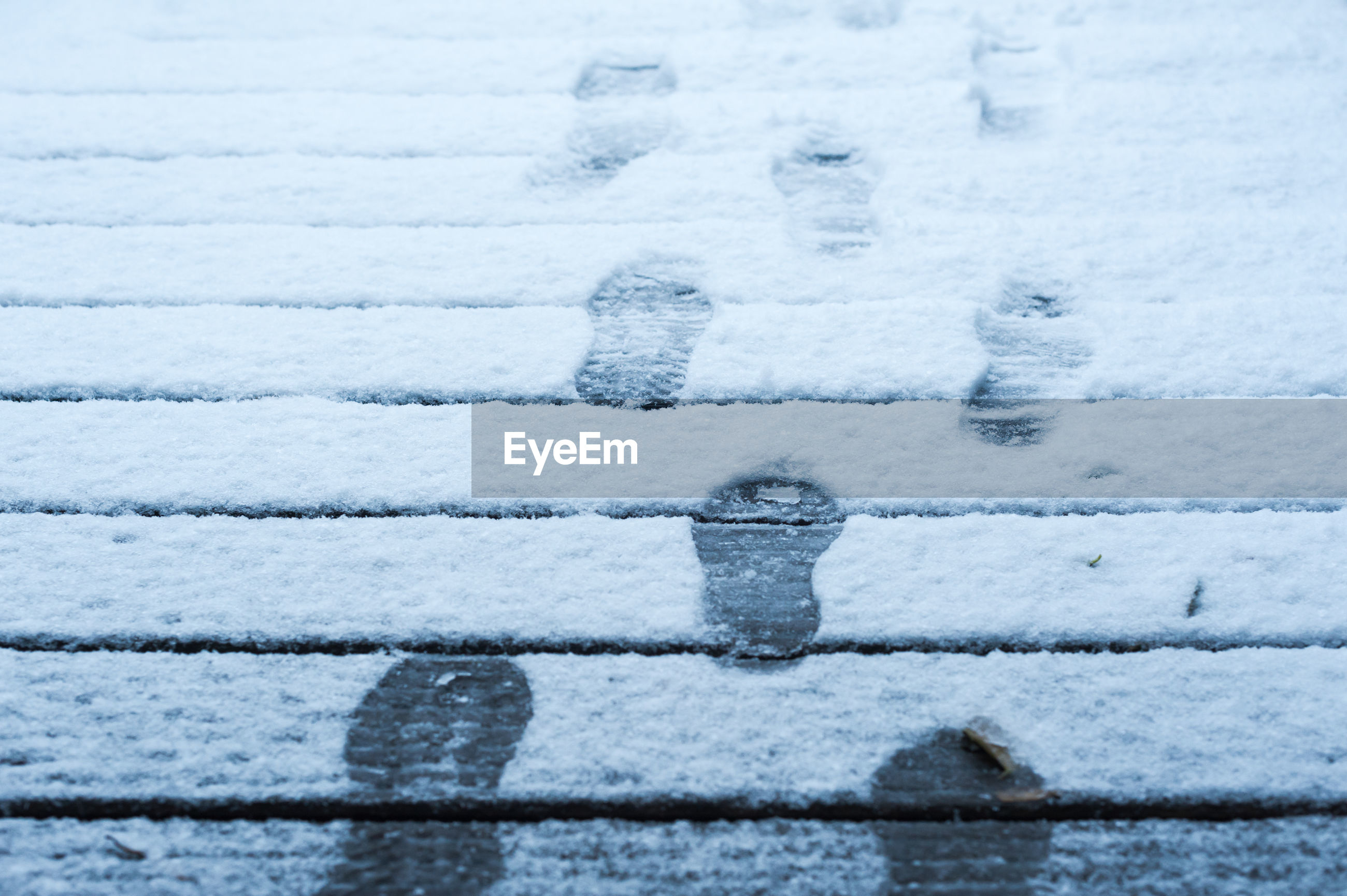 CLOSE-UP OF SNOW IN FIELD