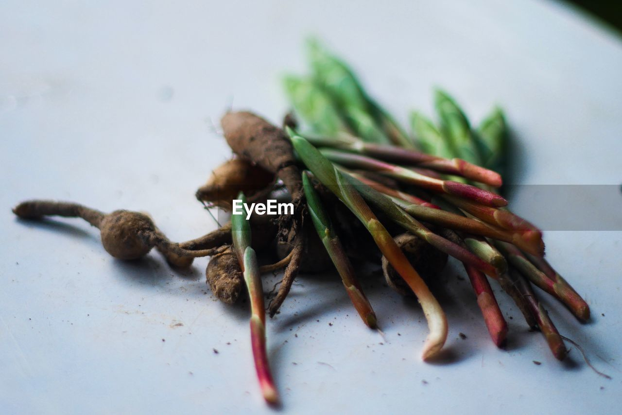 Close-up of vegetables on table