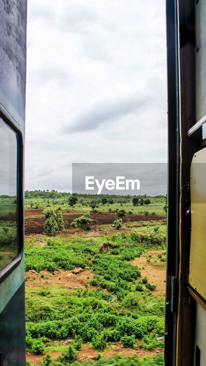 window, sky, mode of transportation, train, rail transportation, environment, plant, public transportation, field, landscape, nature, train - vehicle, transportation, land vehicle, day, tree, cloud - sky, land, glass - material, vehicle interior, no people, outdoors