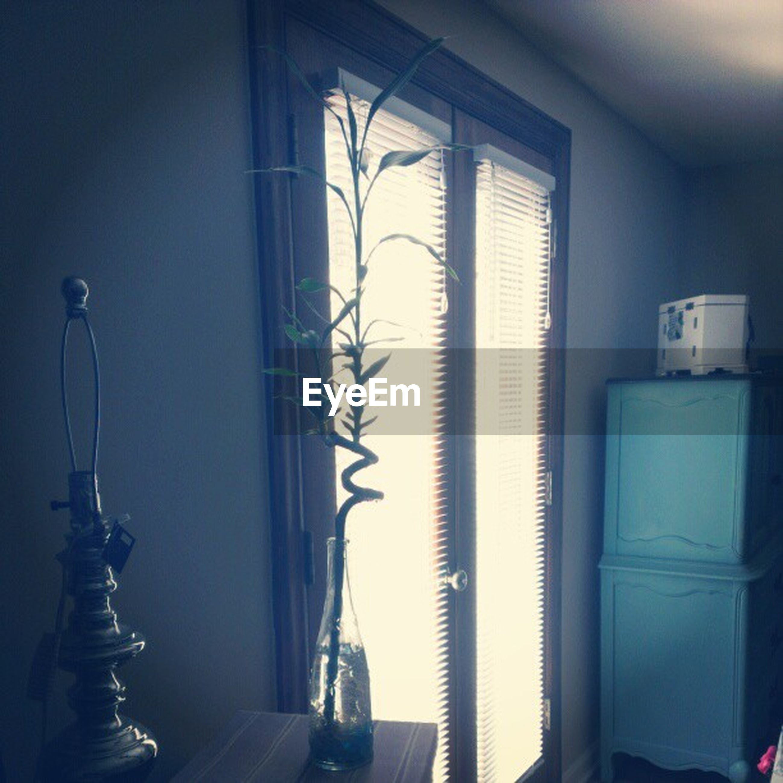 indoors, home interior, window, wall - building feature, door, domestic room, glass - material, wall, house, curtain, closed, absence, metal, no people, transparent, window sill, still life, empty, hanging, close-up