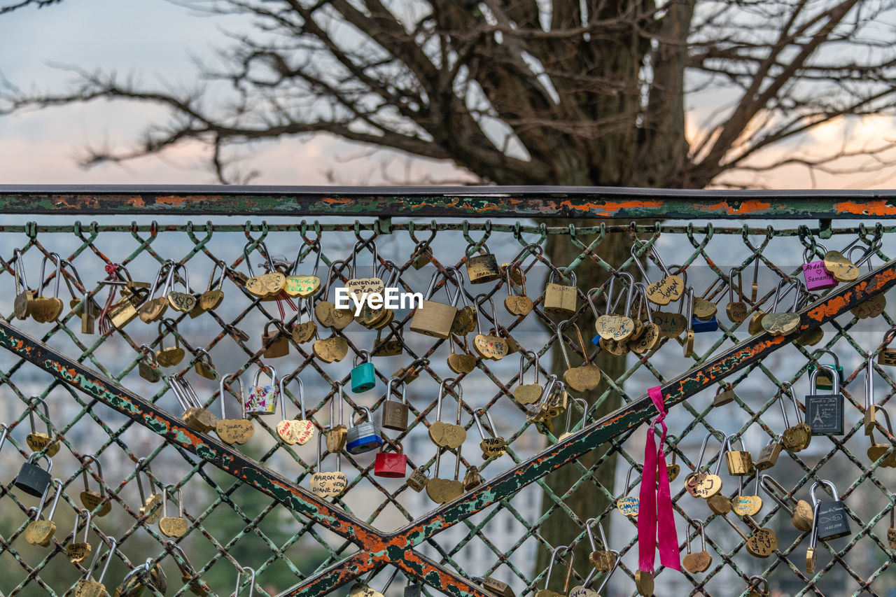 chainlink fence, fence, metal, tree, safety, no people, security, protection, barrier, boundary, bare tree, day, outdoors, focus on foreground, nature, architecture, built structure, pattern, lock, railing