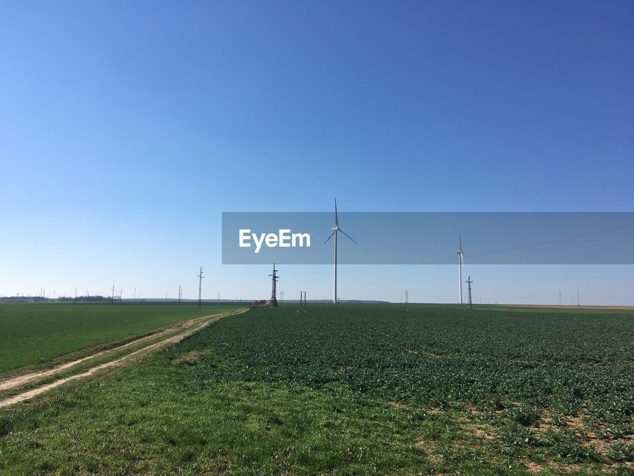 environment, environmental conservation, fuel and power generation, sky, turbine, renewable energy, wind turbine, landscape, alternative energy, field, land, blue, wind power, rural scene, grass, clear sky, nature, copy space, technology, plant, no people, sustainable resources, outdoors, power supply