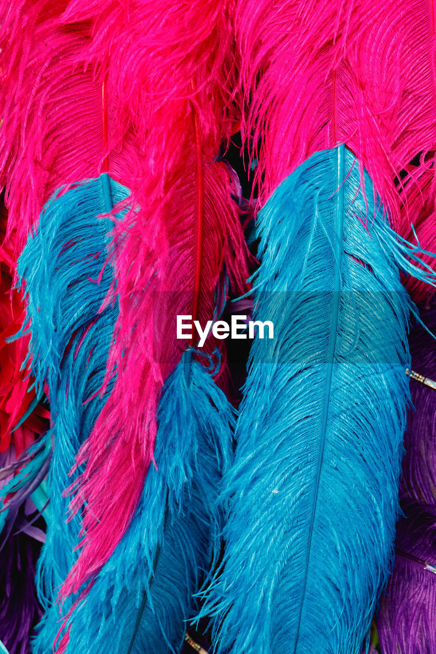 Full frame shot of feathers for sale at market