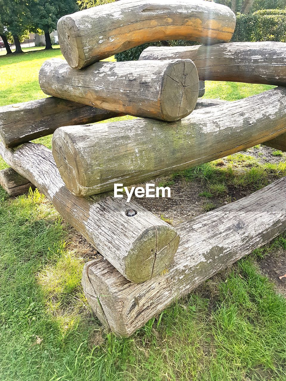 wood - material, day, grass, outdoors, no people, nature, close-up, beauty in nature