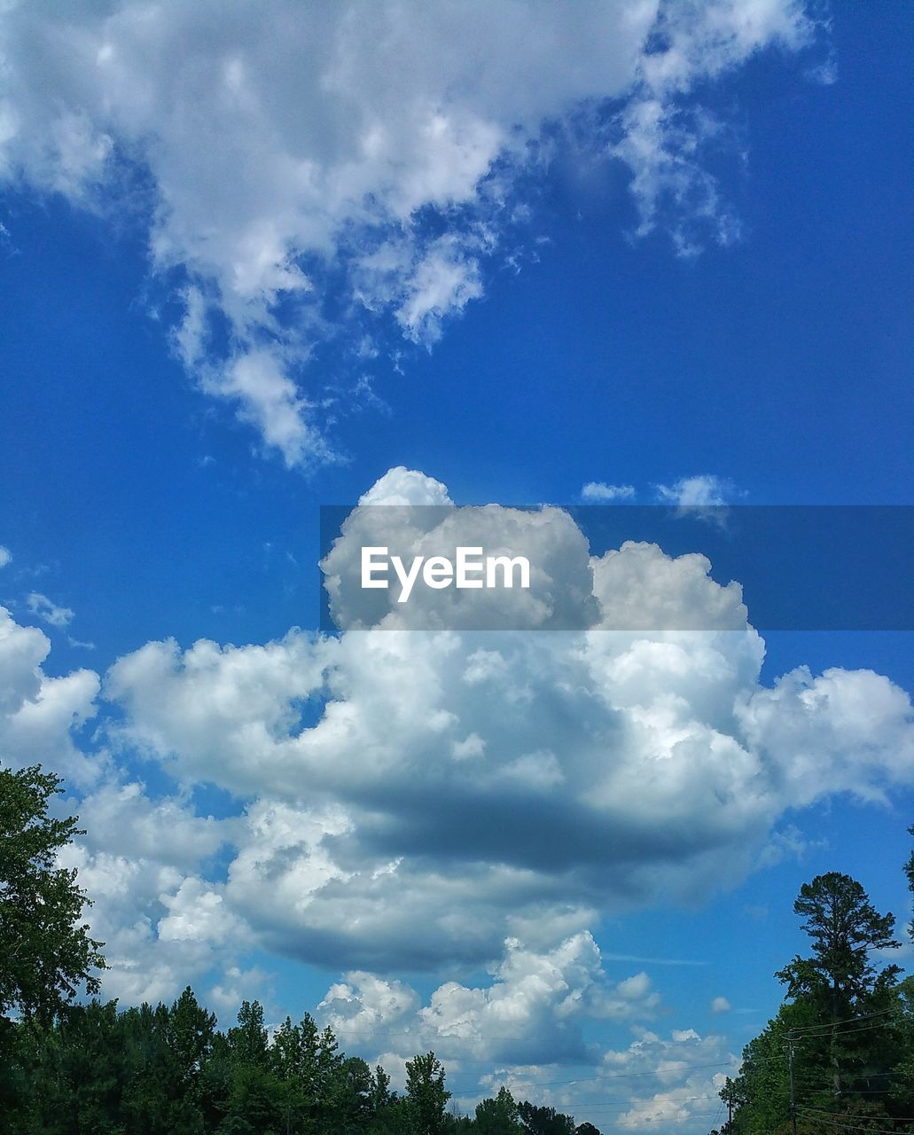 sky, cloud - sky, tree, beauty in nature, low angle view, nature, day, blue, tranquility, scenics, no people, tranquil scene, outdoors, growth