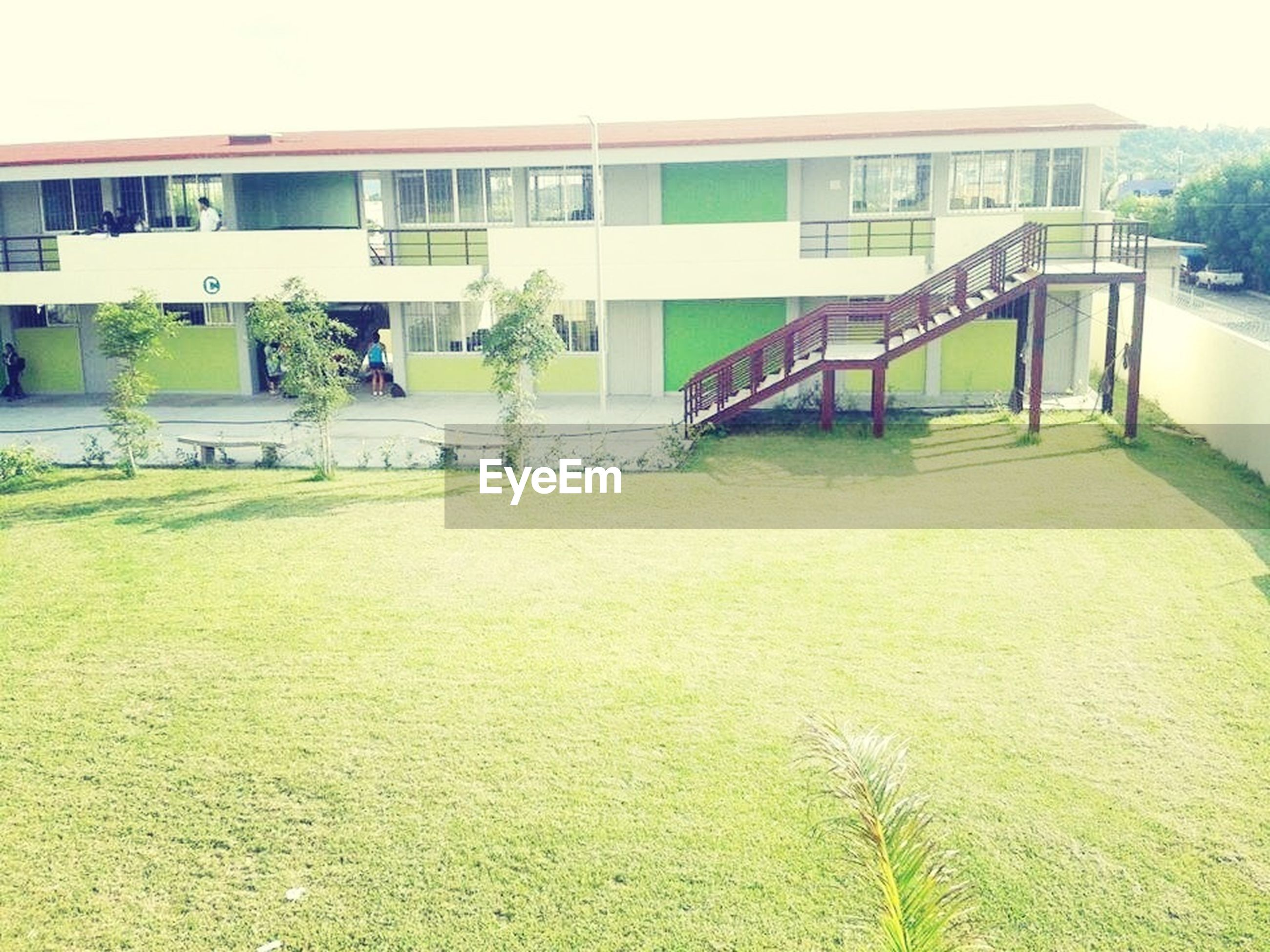 architecture, built structure, grass, building exterior, green color, house, day, growth, lawn, plant, tree, grassy, field, outdoors, no people, sky, green, sunlight, nature, building