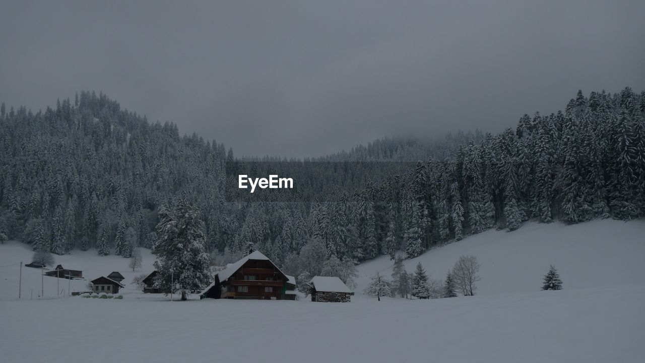 SNOW COVERED HOUSE AND TREES AGAINST SKY