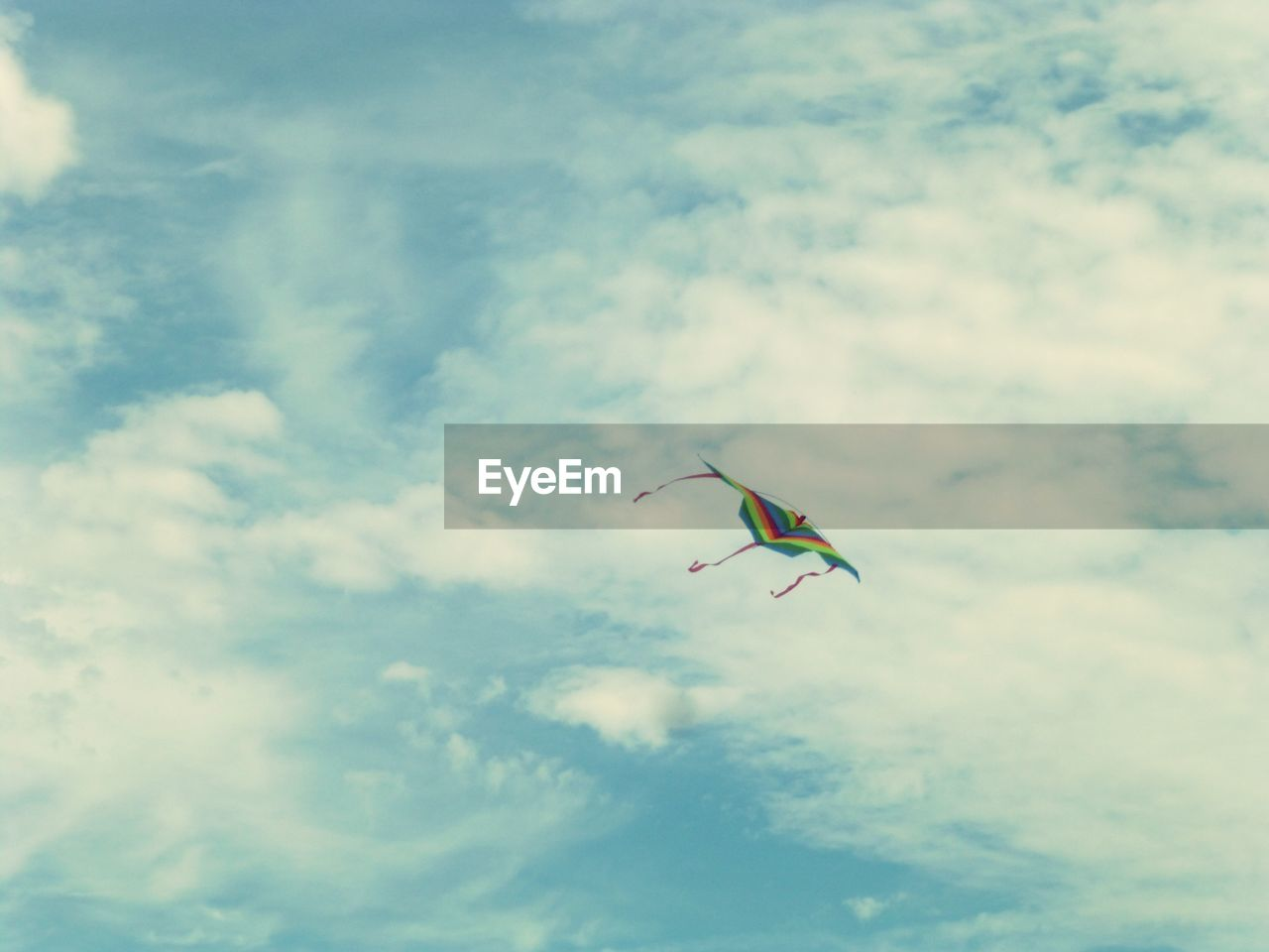 sky, cloud - sky, low angle view, one animal, flying, day, outdoors, nature, mid-air, animals in the wild, animal themes, bird, beauty in nature, no people, spread wings