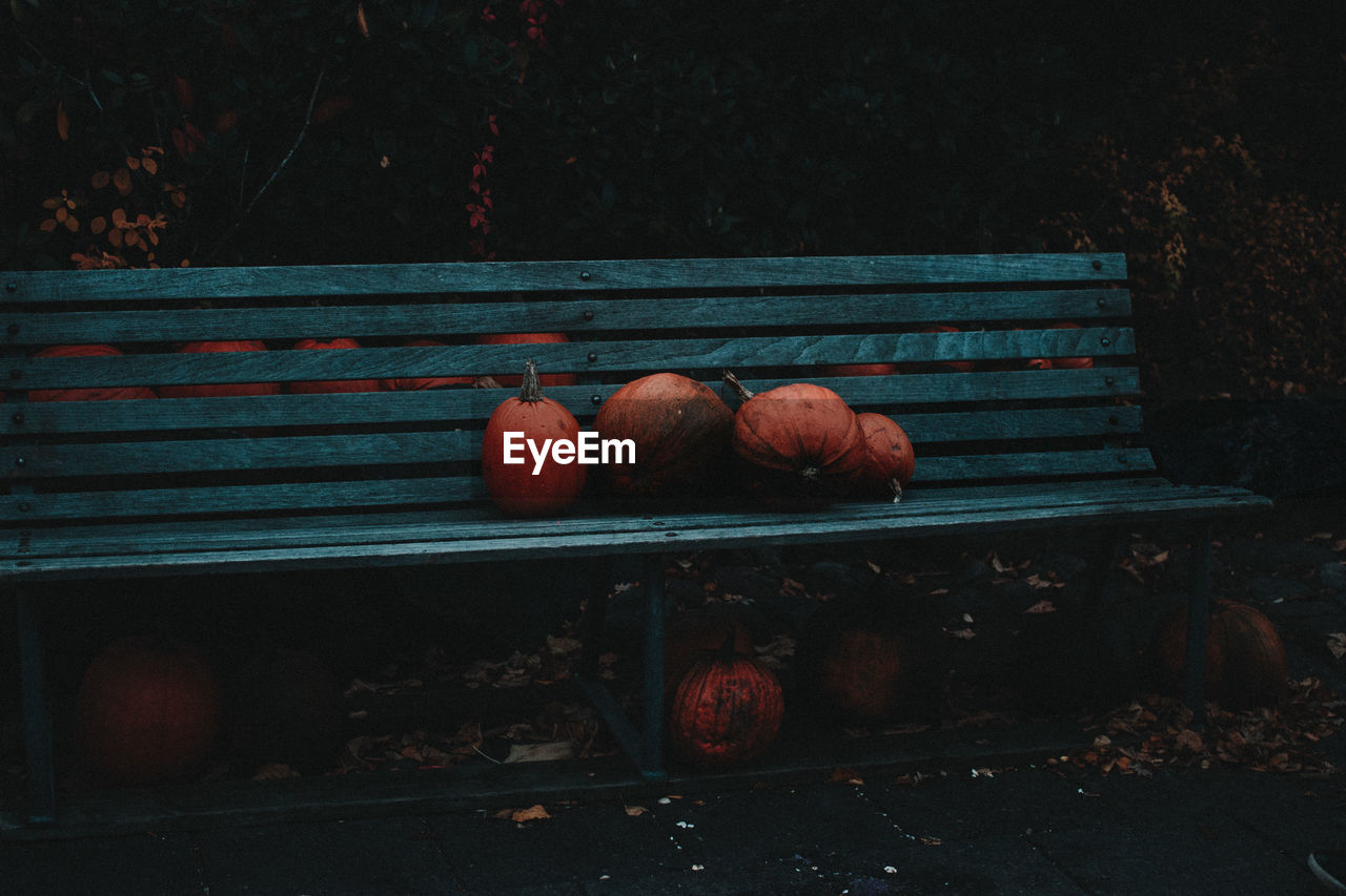 Pumpkins On Bench At Park